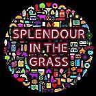 3 X SPLENDOUR IN THE GRASS 3 DAY PASSES WITH CAMPING Sydney City Inner Sydney Preview