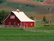 Family wanting farm to rent