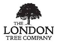 Experienced tree surgeon required for west london based tree company cs30,31,36,38 and 39 min quals