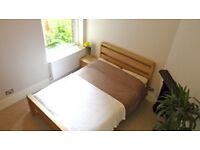 Great Room in Professional Gay Friendly Flat Share