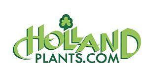 hollandplantshollandplants