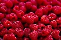 Red Raspberries Available