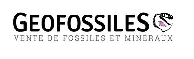 paleo-geofossiles