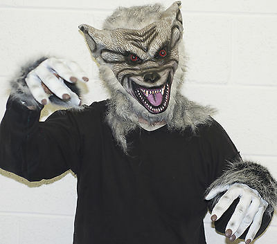 Grau Werwolf Latex Maske & Handschuhe, Halloween Kostüm Unheimlich Wolf Hund