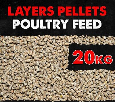 Poultry Layer Pellets Nutrition for Healthy Laying 16% Protein 20KG BMFD DS
