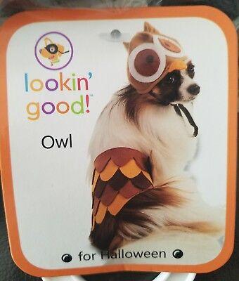 Dog Owl Costume (LOOKIN GOOD Owl Dog Halloween Costume Size)
