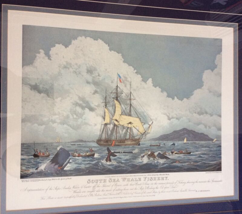Antique Etching South Sea Whale Fishery William John Huggins Thomas Sutherland