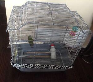 bird cage20$