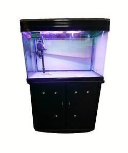 Fish Tank Aquarium 146L with Cabinet $375.00 Blacktown Blacktown Area Preview