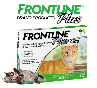 Frontline Plus Flea and Tick Control and Treatment for Cats 6-Doses Sealed