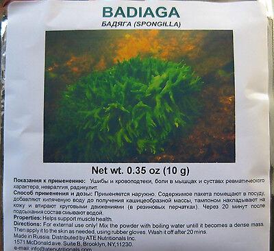 Badiaga Spongilla  Acne  Bruises  Pigmentation  Spots From Pimples   More