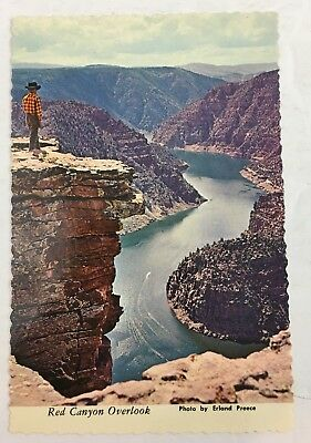 Vintage Postcard Red Canyon Overlook Ashley National Forest Photo Erland Preece