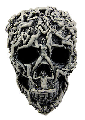 """7.5"""" Long Human Skull Morphing Skeleton Face Collectible Display Resin Statue"""