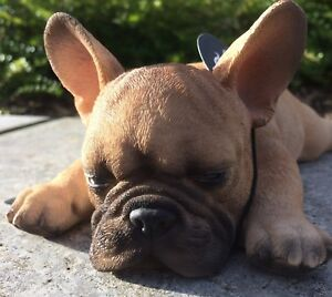 Sleeping French Golden Bulldog Vivid Arts Indoor Outdoor Garden Ornament
