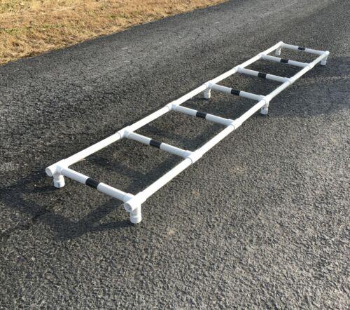Dog agility training ladder