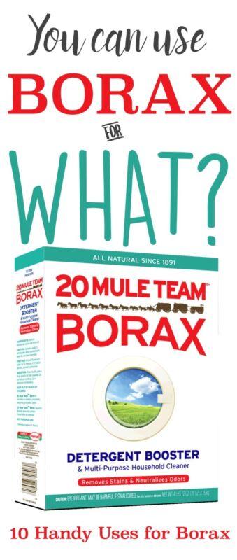 10 Handy Uses For Borax Ebay