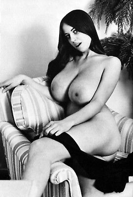 VINTAGE NUDE ARLENE BELL BUSTY 8.5 X 11 GLOSSY QUALITY GUARANTEED!!
