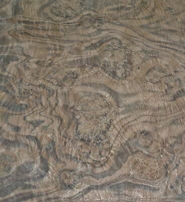 Walnut Burl Wood Veneer 17 X 42 Raw Veneer No Backing Aaa Quality Grade 142