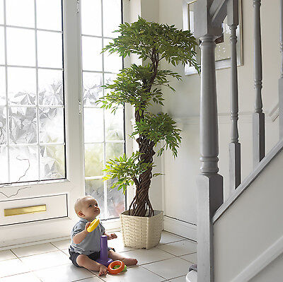 Japanese Fruticosa Artificial Trees & Plants | 6ft Artifical Tree | Topiary Tree ()