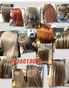 Haircut & colour package ( 70$ ) Ladies only