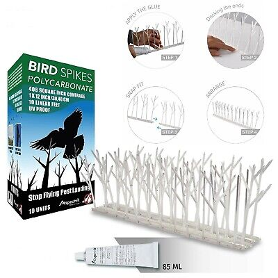 Anti Bird Spikes Pro Wide Plastic Pigeon Repellent Strips with Covers 10 -