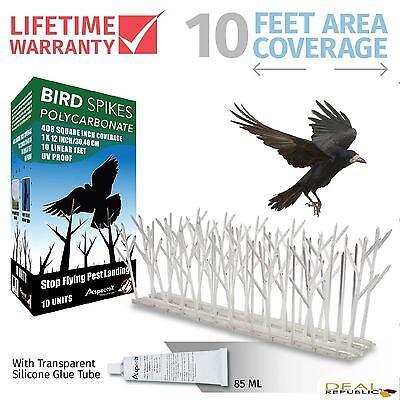 Bird Spikes Polycarbonate Kit 10 Ft Nesting Deterrent Control by Aspectek HR411