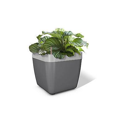Emsa Mybox Window Box Flower Pot 35 CM Anhrazit/Aluminium Planter Plant Box