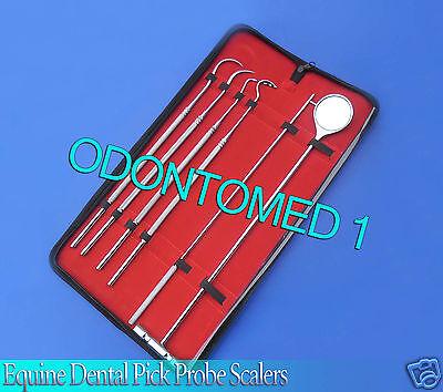 6 Pcs Equine Dental Pick Probe Scalers Veterinary Instruments New