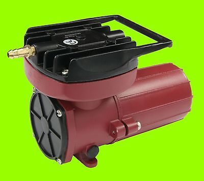 Hailea ACO 12 Volt 006D Kompressor, Luftpumpe Transportbelüfter, Köderfisch PKW