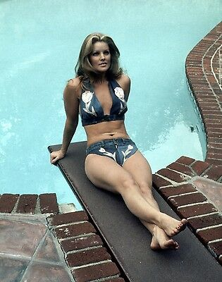 PRISCILLA (ELVIS) PRESLEY POOLSIDE 8X10 GLOSSY MUSIC PHOTO - MUST HAVE!