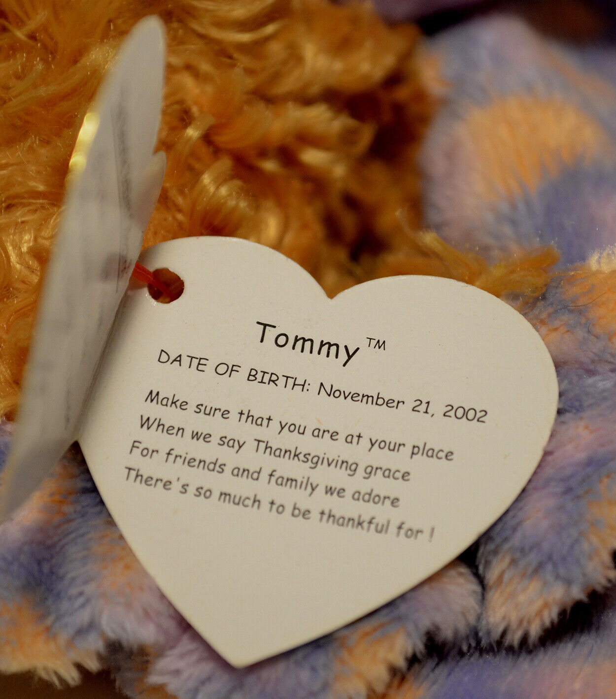 "::TY Beanie Babies - ""Tommy"" - Date of Birth November 21, 2002"