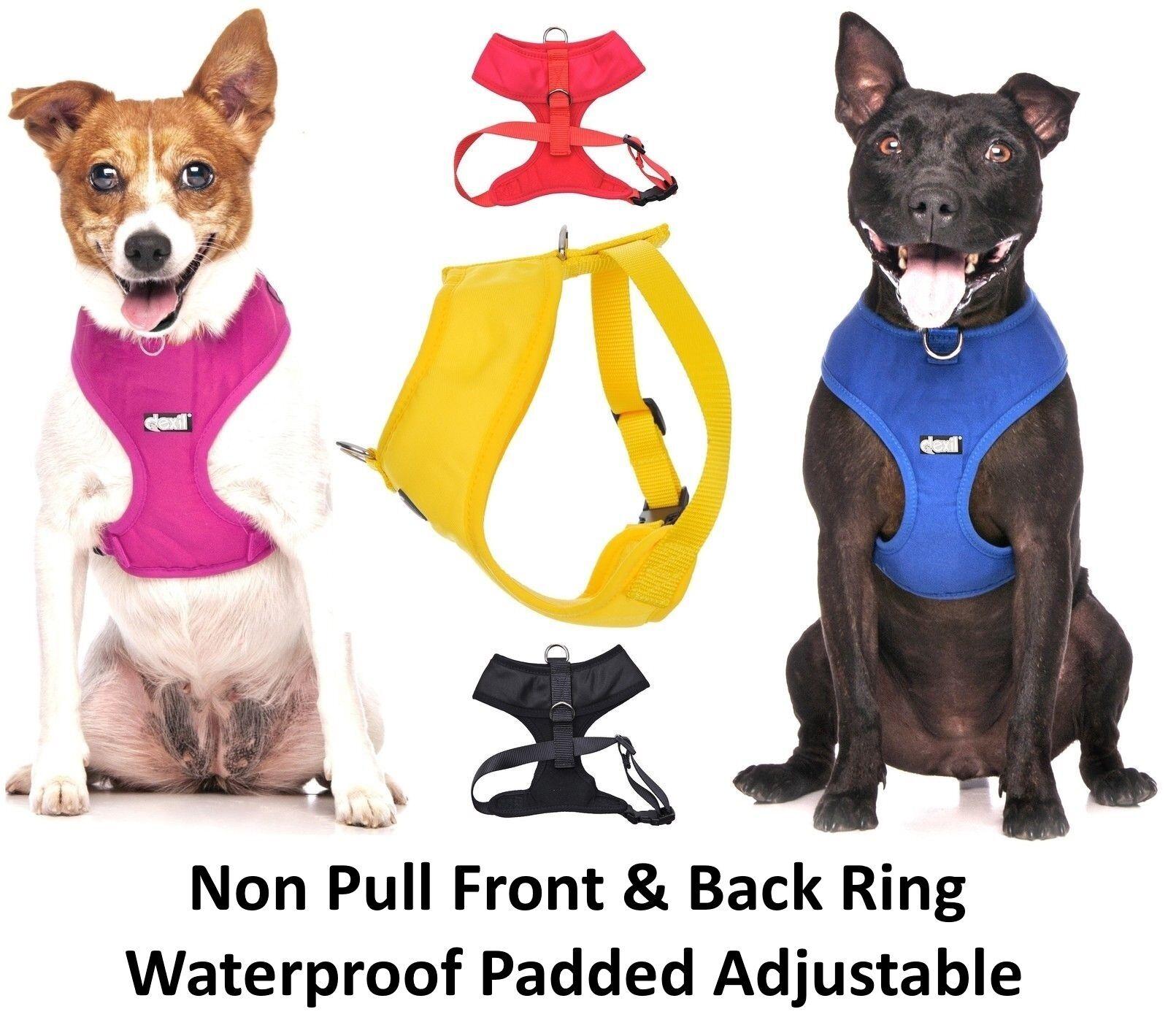 Lifetime Guarantee Dog Collar