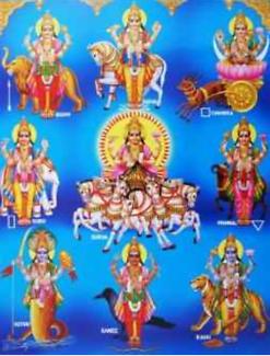 Indian Astrologer ( Red Book )