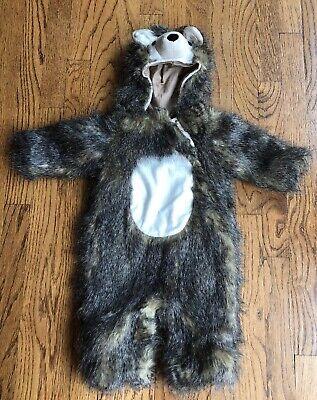 Porcupine Baby Halloween (New! Pottery Barn Kids Halloween Woodland Baby Hedgehog Costume 6 - 12)