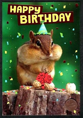 BIRTHDAY Squirrel Nuts Red Shine Bow Party Hat Confetti-  Birthday Greeting Card - Red Party Hat