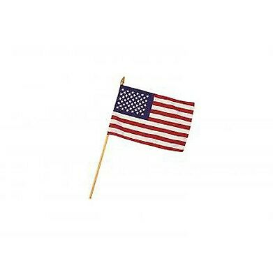 United States Flag on a Stick