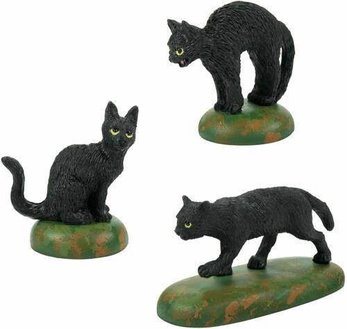 Dept 56 A CLOWDER OF BLACK CATS  SET OF 3 Halloween Village 6007711 NEW 2021
