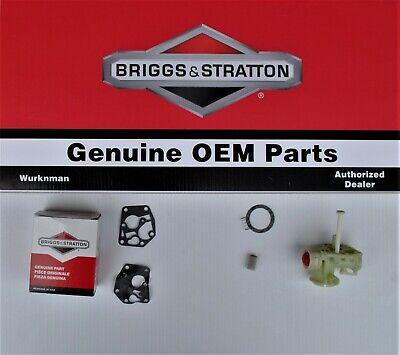 Genuine OEM Briggs & Stratton 794061 Carburetor