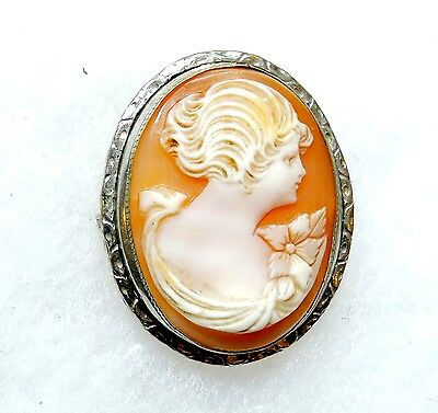 Vintage Carved Shell Cameo Brooch Pin Pendant MA17319