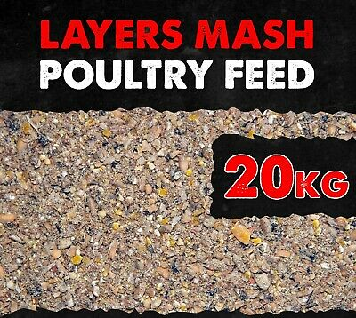 Poultry Layer Mash Feed 20KG Nutrition for Healthy Laying 16% Protein BMFD DS