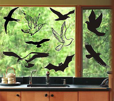 Finestra Adesivo Immagini Per Finestre Uccello Avvisi Uccelli Giardino D'inverno