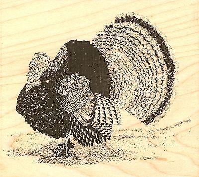 Turkey Inkadinkado Mini Cling Stamp