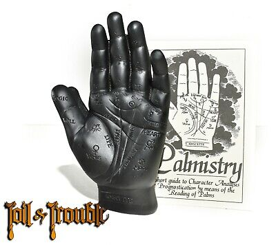 Black Palmistry Hand Model kit Fortune Telling Palm Reading with Booklet