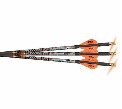 "Ravin Crossbows .001 Premium 20"" Lighted Arrows 3-Pack R134"
