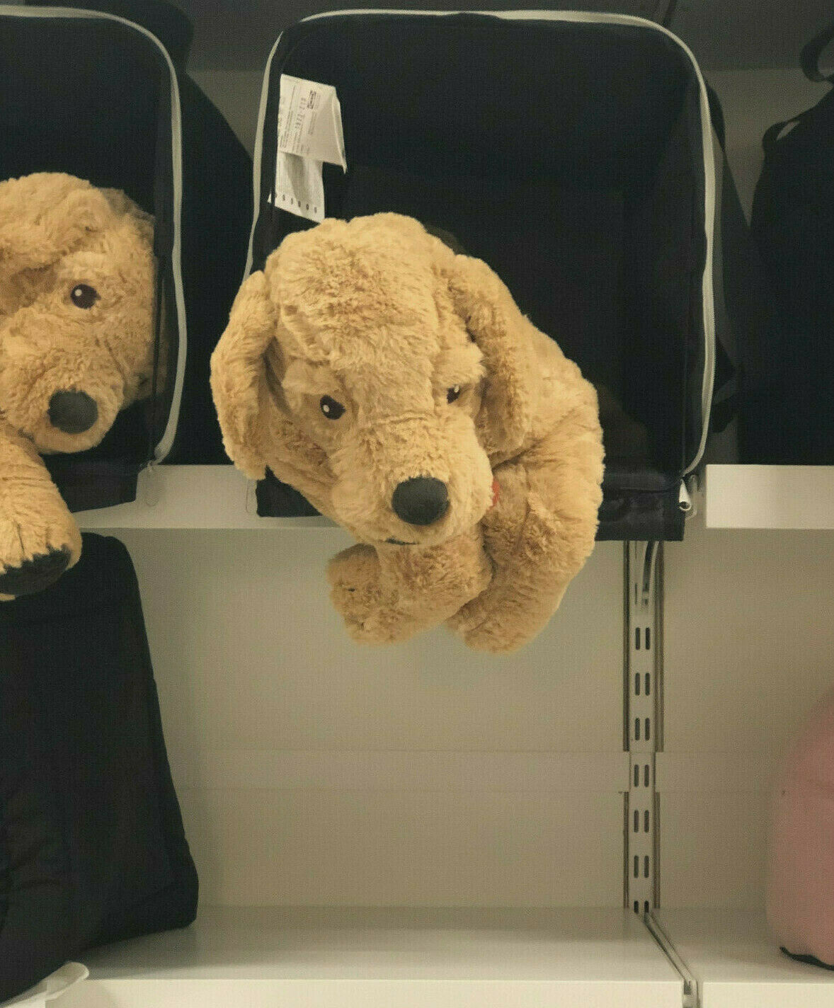 Ikea GOSIG GOLDEN 40 cm Kuscheltier Retriever Stofftier Hund Geschenk Kind NEU*