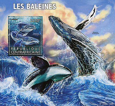 Central African Rep 2015 MNH Whales 1v S/S Marine Animals Humpback Whale Stamps