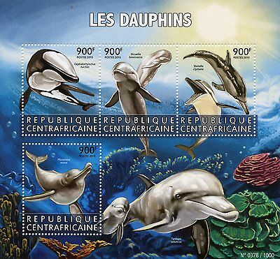 Central African Republic 2015 MNH Dolphins 4v M/S Marine Animals Clymene Dolphin