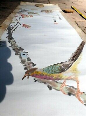 Vintage Chinese Painting Scroll Pheasant Bird Flowers Tree branch antique