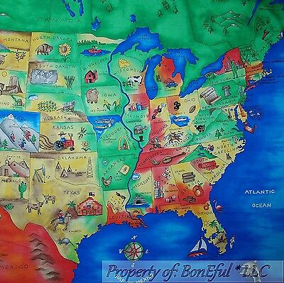 BonEful FABRIC Cotton Quilt Panel Sketch Common States America*n Map Everybody Striking