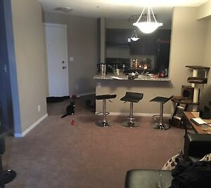 Lease takeover 1 bdrm +den brand new in suite laundry